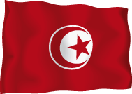 Флаг_Тунис.png